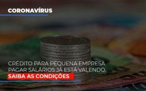 Credito Para Pequena Empresa Pagar Salarios Ja Esta Valendo Nfp Contabilidade - NFP Contabilidade